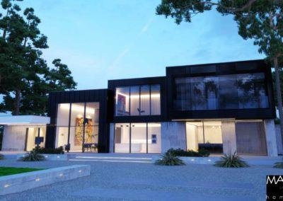 projekt czarnego domu wizualizacja