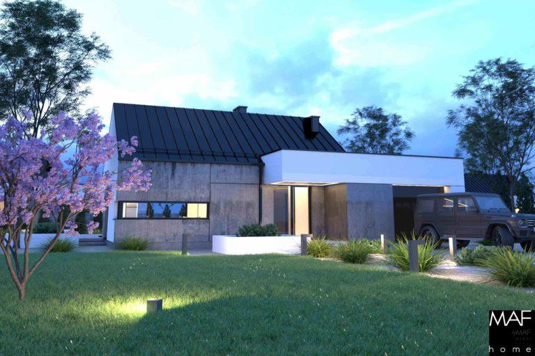 dom parterowy wizualizacja - gotowy projekt